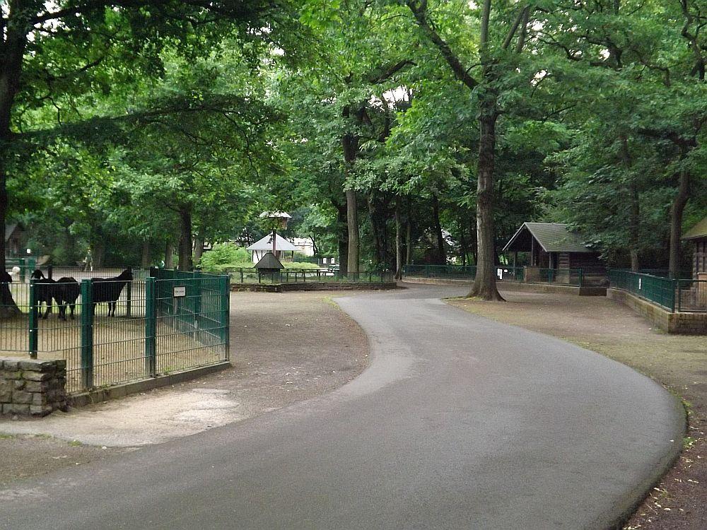 Kinderzoo (Tierpark Berlin)