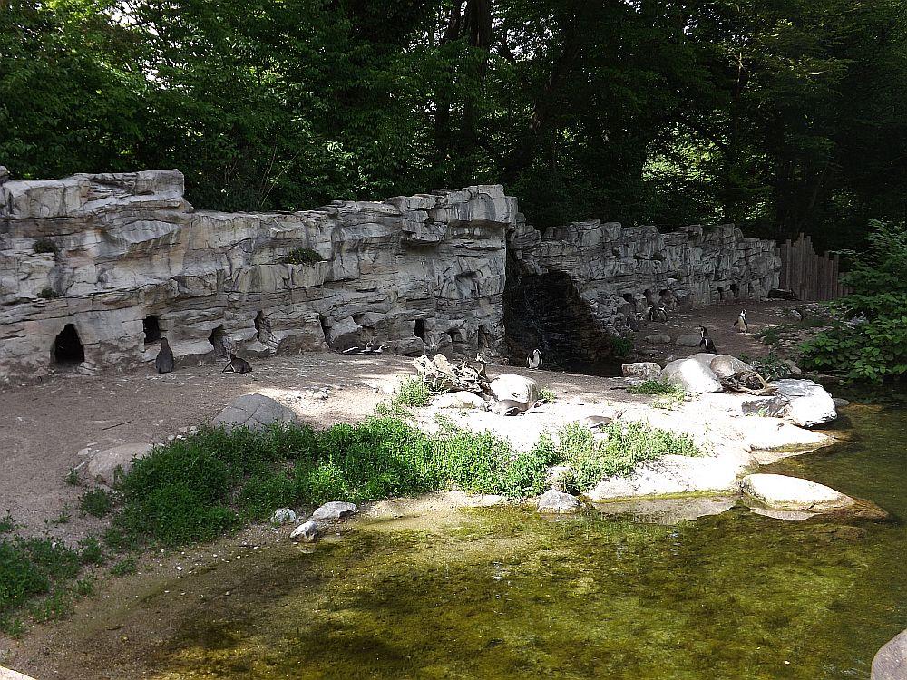 Pinguinanlage (Tierpark Hellabrunn)