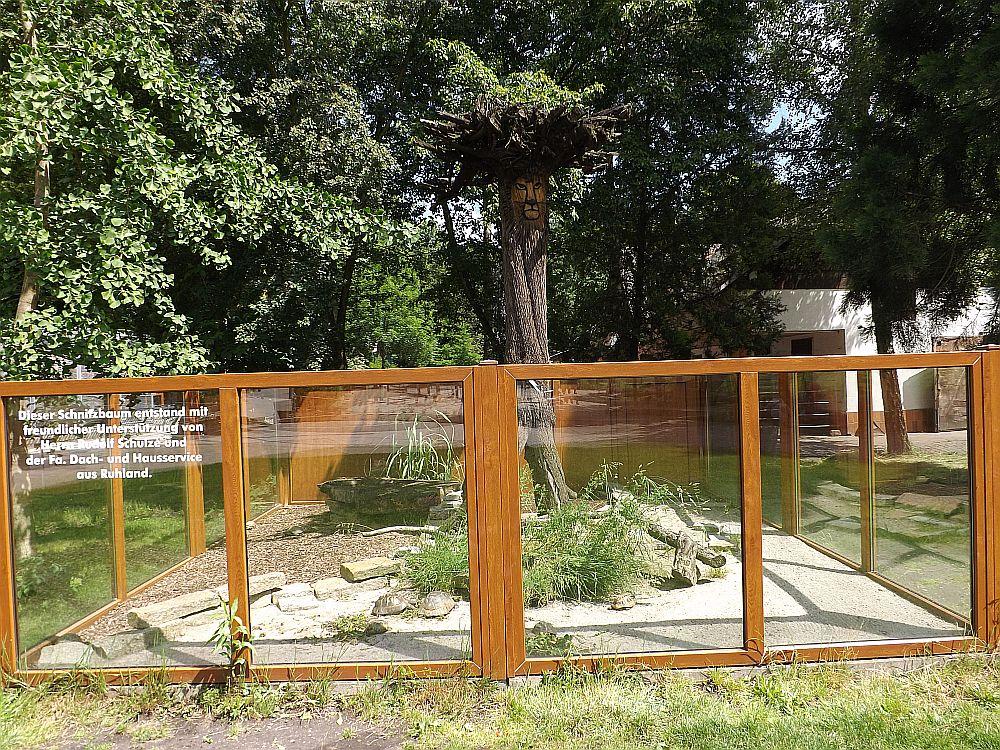 Freilandterrarium für Landschildkröten (Tierpark Senftenberg)