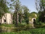 Außenanlage der Welt der Affen (Tierpark Hellabrunn)