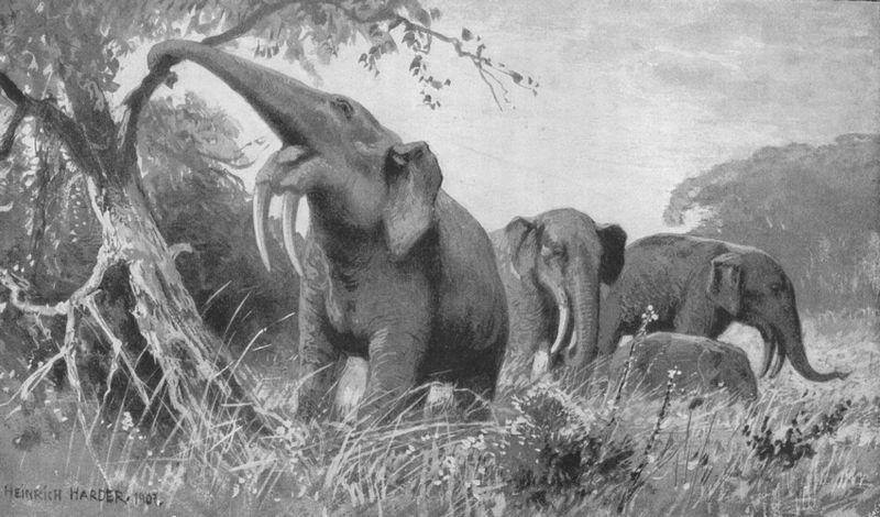 Dinotherium (Heinrich Harder)