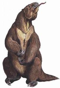 Megatherium (Dmitry Bogdanov)