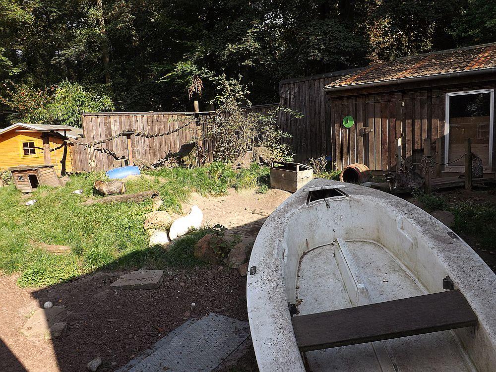 Anlage für Waschbären und Marderhunde (Vogel- und Tierpark Solingen-Ohligs)