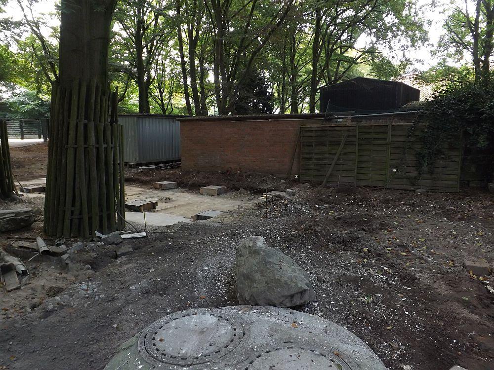 Klo (Zoo Krefeld)