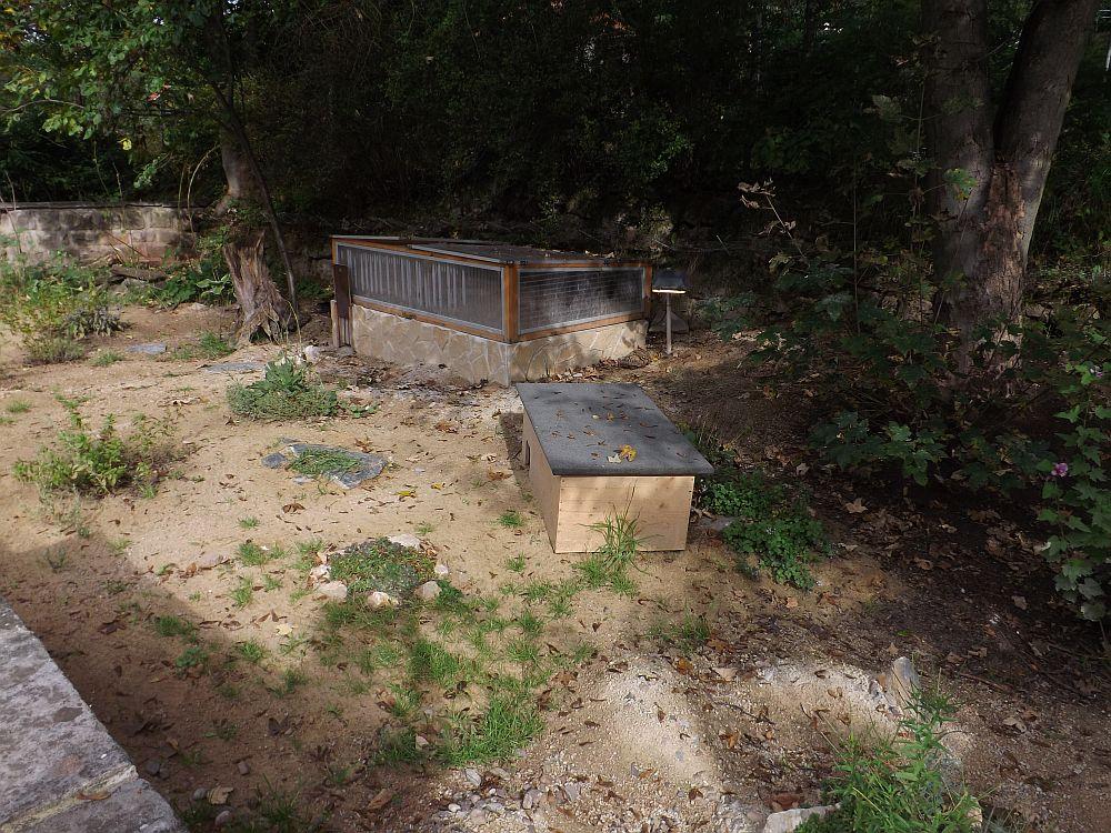 Anlage für Landschildkröten (Thüringer Zoopark)