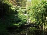 Sichlervoliere (Vogelpark Herborn)