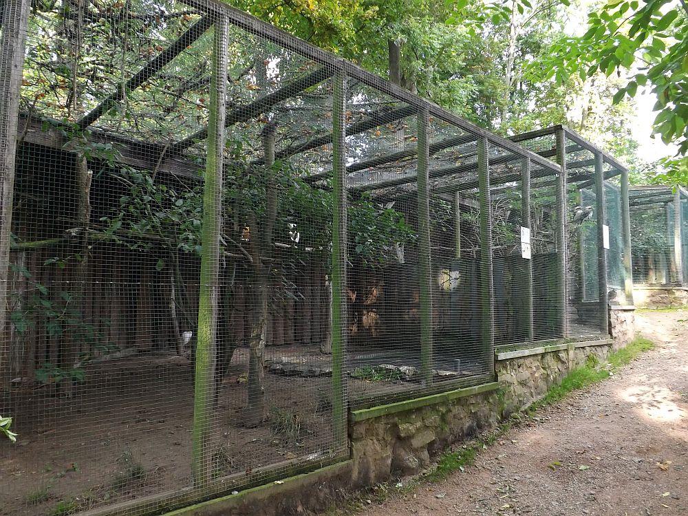 Volieren (Tierpark Bad Liebenstein)