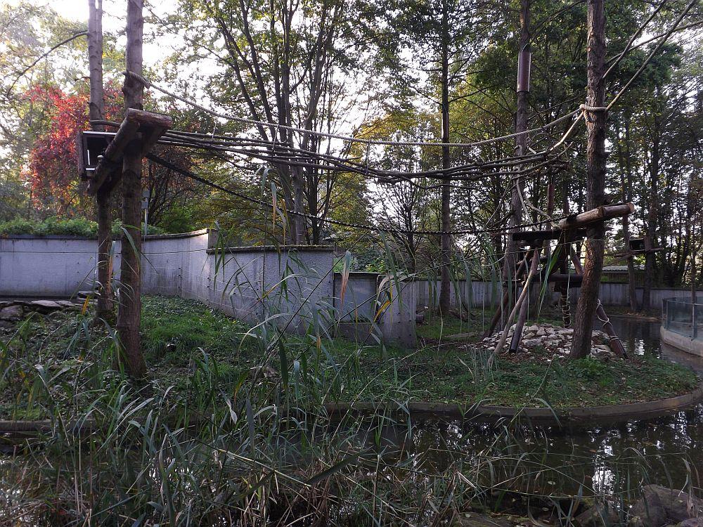 Waschbären/Fischotter-Anlage (Tiergarten Straubing)