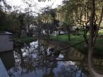 Anlage für Waschbären und Fischotter (Tierpark Niederfischbach)