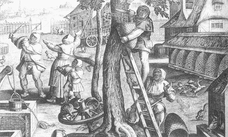 Bäuerlicher Bienenstand, 16. Jhdt (Jan van der Straet)