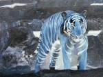 Blauer Tiger