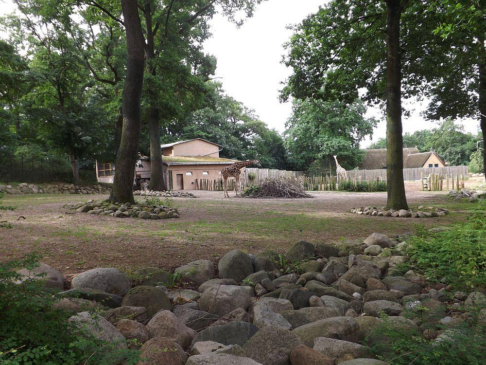 Giraffenanlage (Zoo Schwerin)