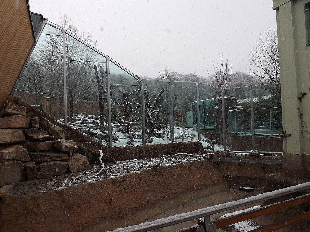 Menschenaffenaußenanlage (Tierpark Hellabrunn)