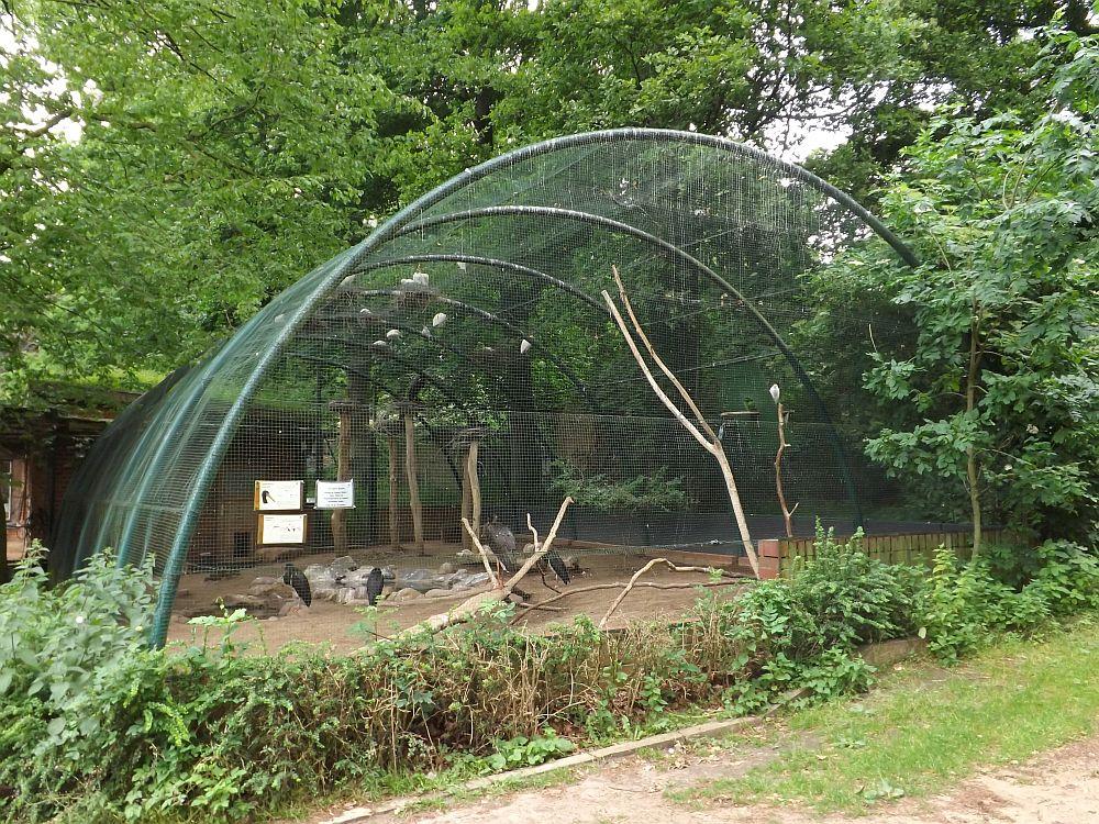 Storchenvoliere (Zoo Schwerin)