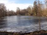 Teich (Tierpark Nymphaea)