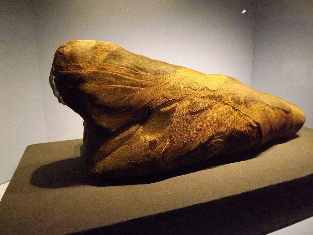 Ibismumie (Hessisches Landesmuseum)