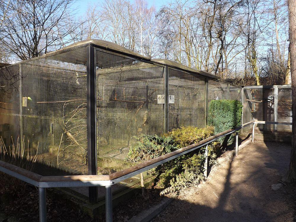 Volieren (Tierpark Nymphaea)