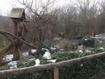 Waschbäranlage (Wildparadies Tripsdrill)