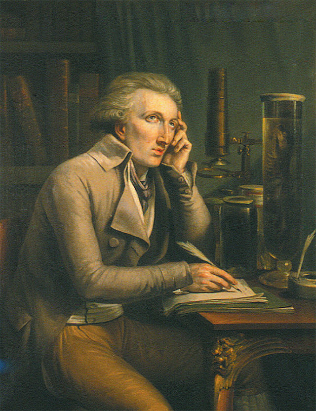 Portrait of Georges Cuvier (Mathieu-Ignace van Brée)