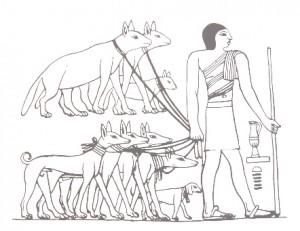 Als Tributzahlung werden dem König Hyänen (oben, erkennbar am Schwanz) und Windhunde überbracht