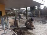 Baustelle Schweinestall (Zoo Zürich)