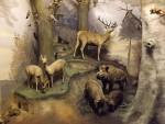 Mitteleuropäischer Wald (Hessisches Landesmuseum Darmstadt)