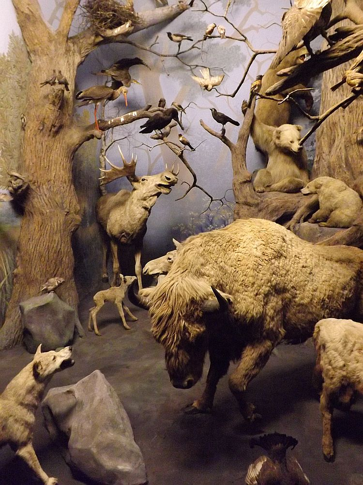 Nordosteuropäischer Wald (Hessisches Landesmuseum Darmstadt)