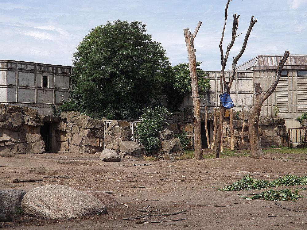 Elefantenanlage (Tierpark Berlin)