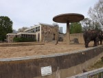 Elefantenhaus (Zoo Magdeburg)