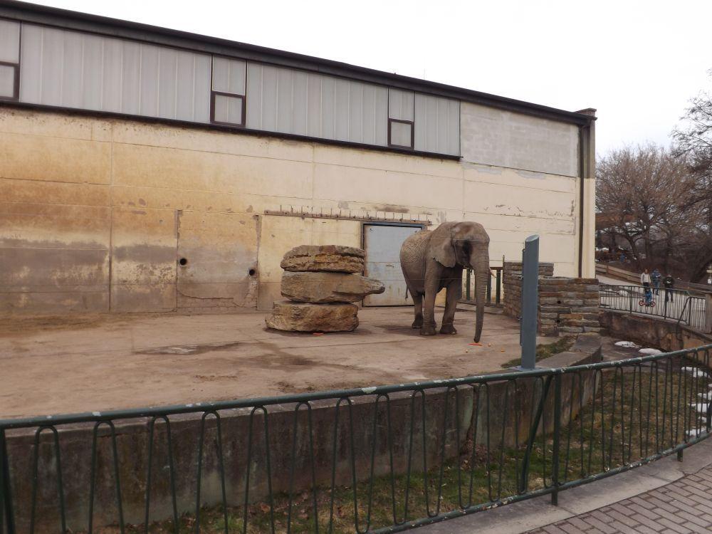 Alte Elefantenanlage (Thüringer Zoopark)