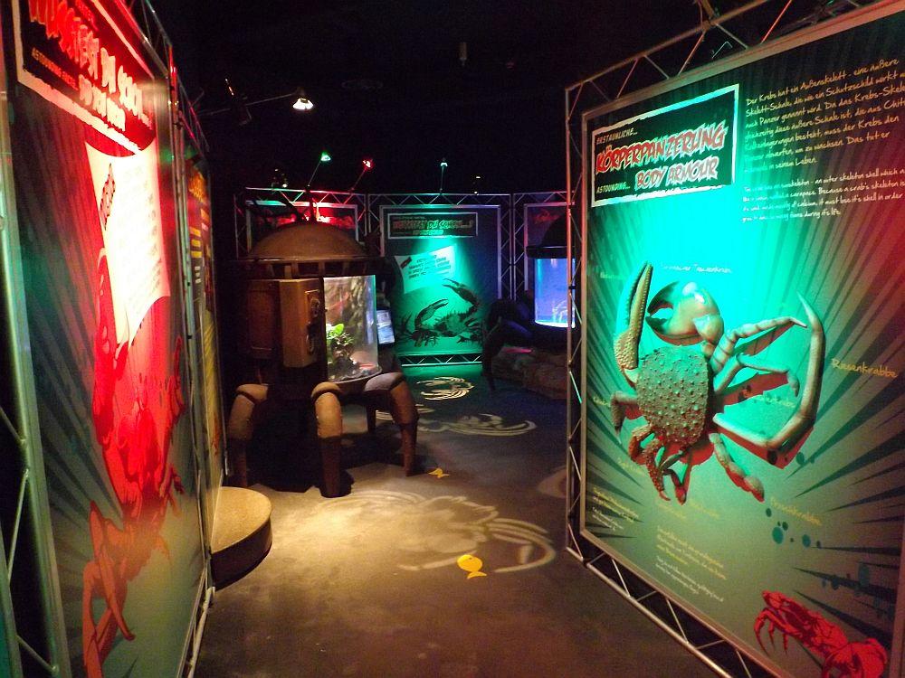 Invasion der Krebse (Sea Life München)
