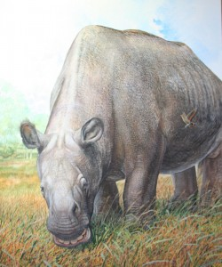 """Toxodon platensis lebte vor zehn bis zwanzigtausend Jahren in Südamerika.  Peter Schouten (aus """"Biggest, Fiercest, Strangest"""", W. Norton Publishers, in Produktion)"""
