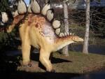 Stegosaurus (Urweltmuseum Hauff)