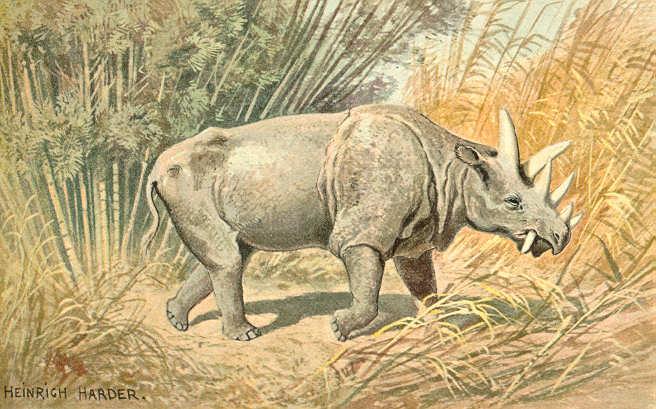 Dinoceras (Heinrich Harder)