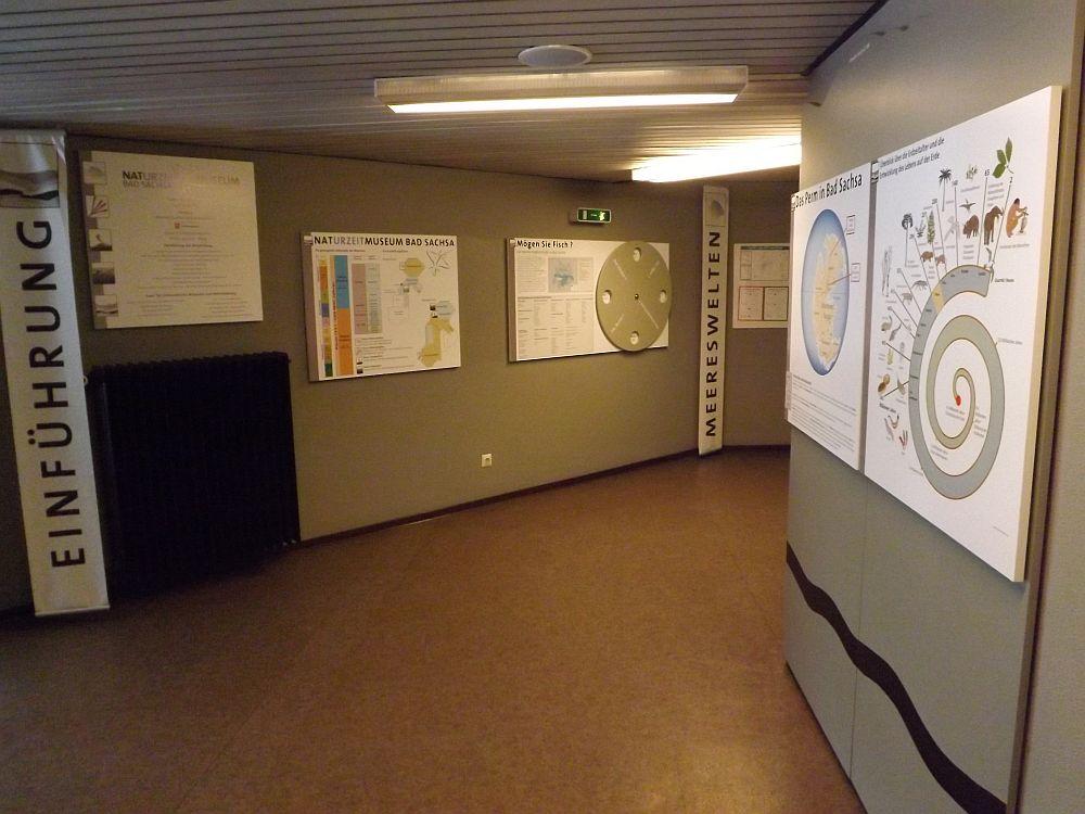 NatURzeitmuseum Bad Sachsa