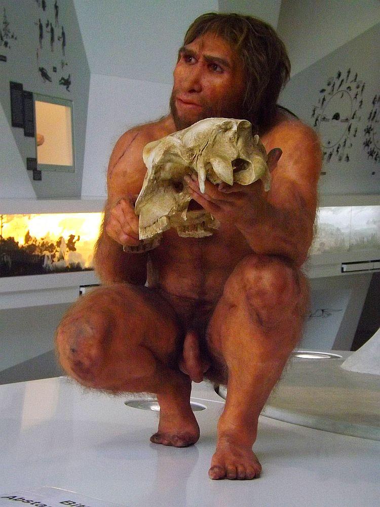 Hamlet, Homo heidelbergensis (Paläon)