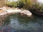 Seehundanlage (Zoo Zürich)