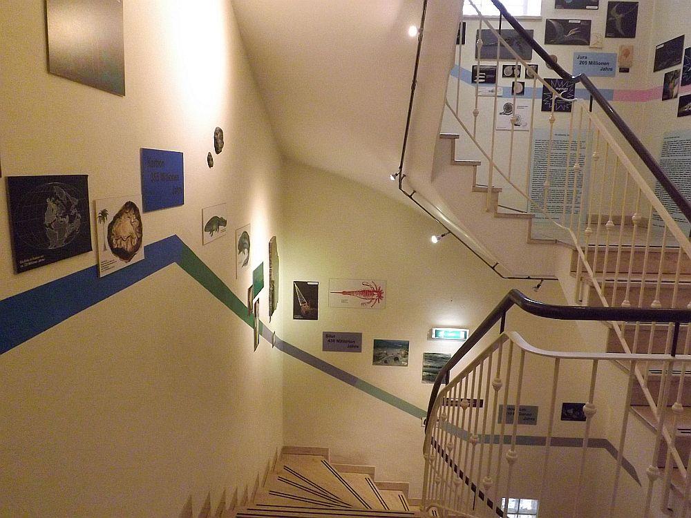 Urzeitmuseum Oberfranken