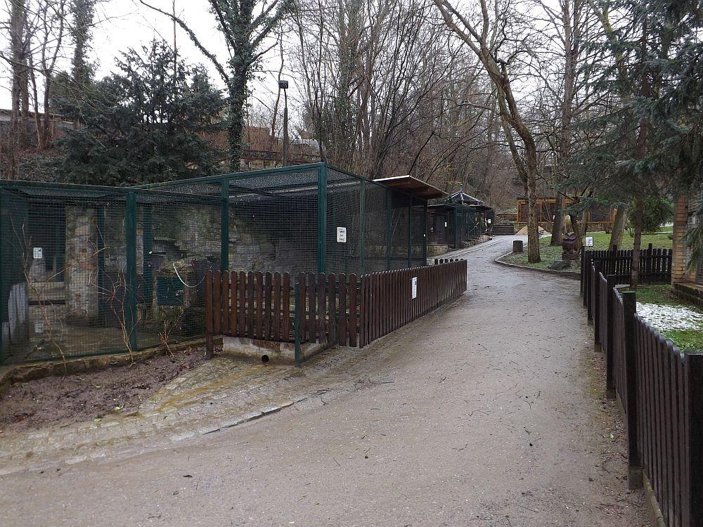 Heimatnaturgarten Weißenfels
