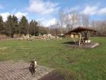 Ziegenwiese (Heimattierpark Merseburg)