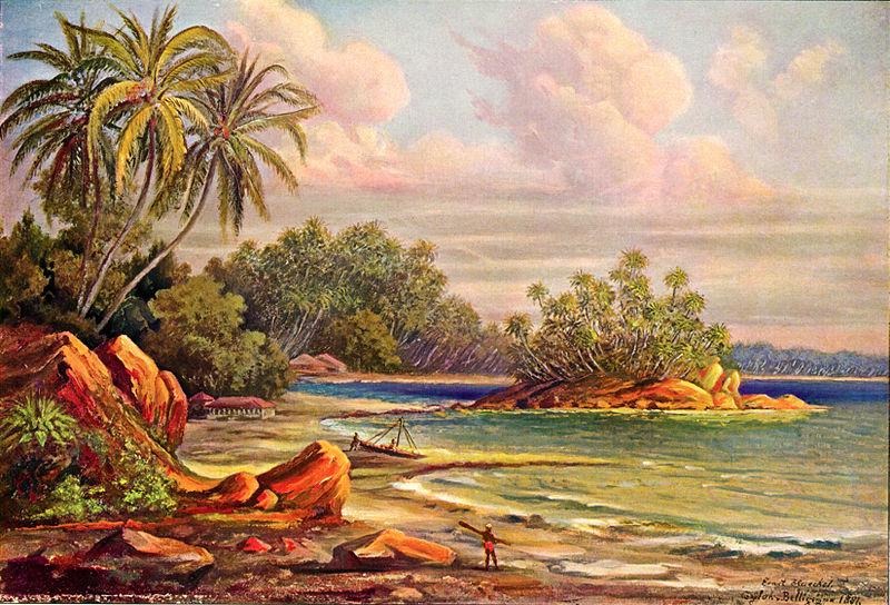 Cocos-Insel bei Belligemma (Ernst Haeckel)