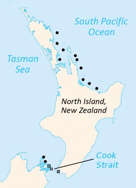 """Restbestände gibt es auf einigen der Nordinsel vorgelagerten Inseln. Punkte: Sphenodon punctatus Quadrate: """"Sphenodon guentheri"""""""