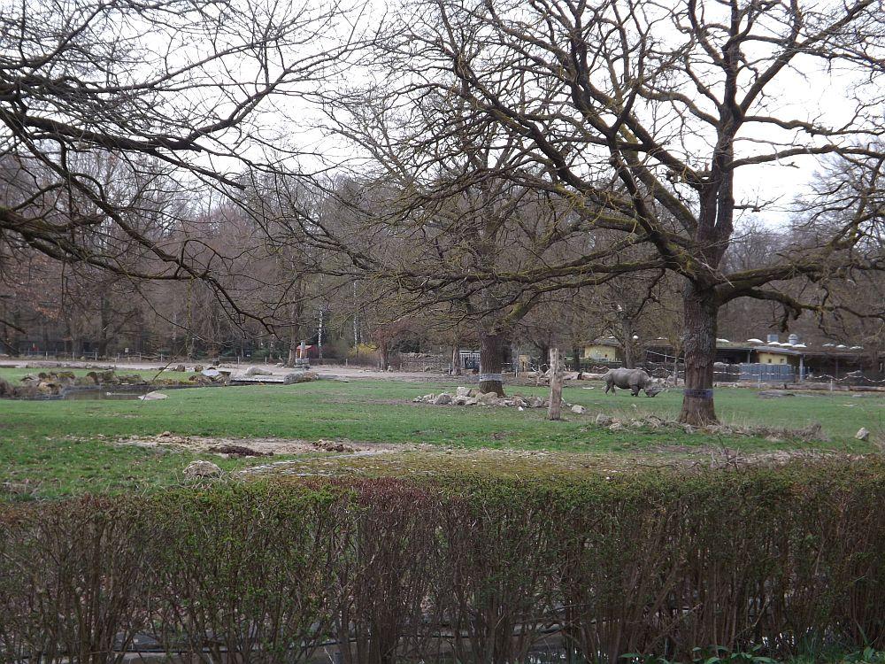Afrikasavanne (Zoo Augsburg)