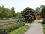 Bauernhof (Tiergarten Falkenstein)