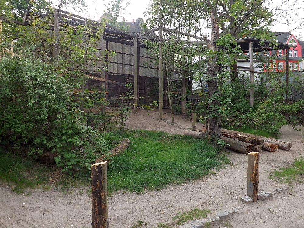 Baustelle (Zoo der Minis)
