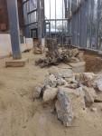 Innenanlage der Erdmännchen (Zoo Augsburg)