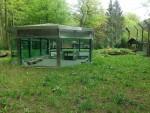 Löwengehege (Zoo Eberswalde)