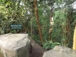 Masoala (Zoo Zürich)