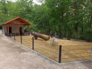 Baustelle: Minischweinstall (Tierpark Hirschfeld)
