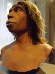 Neandertaler(Landesmuseum Hessen Darmstadt)